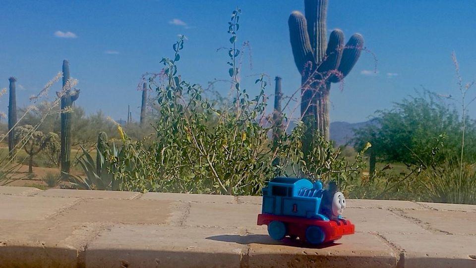 Child's favorite Thomas the Tank Engine toy